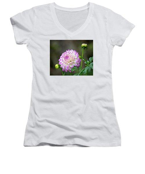 Dahlia Flower Women's V-Neck T-Shirt