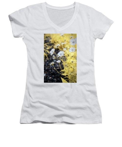 Daisey Women's V-Neck T-Shirt (Junior Cut) by Paul Seymour