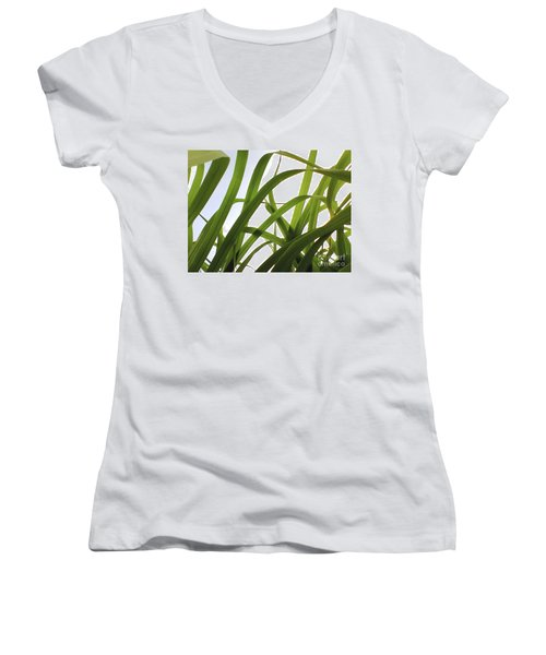 Women's V-Neck T-Shirt (Junior Cut) featuring the photograph Dancing Bamboo by Rebecca Harman