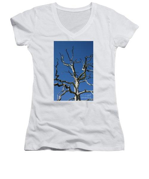 Dead Oak Tree Women's V-Neck T-Shirt (Junior Cut) by Kennerth and Birgitta Kullman