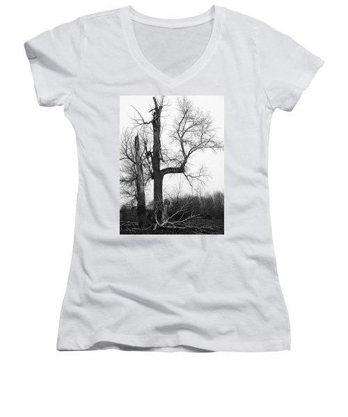 Dead Tree Ten Mile Creek Women's V-Neck (Athletic Fit)