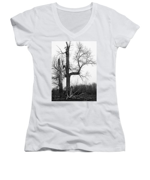 Dead Tree Ten Mile Creek Women's V-Neck (Athletic Fit)