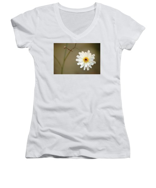 Death Valley Superbloom 104 Women's V-Neck T-Shirt