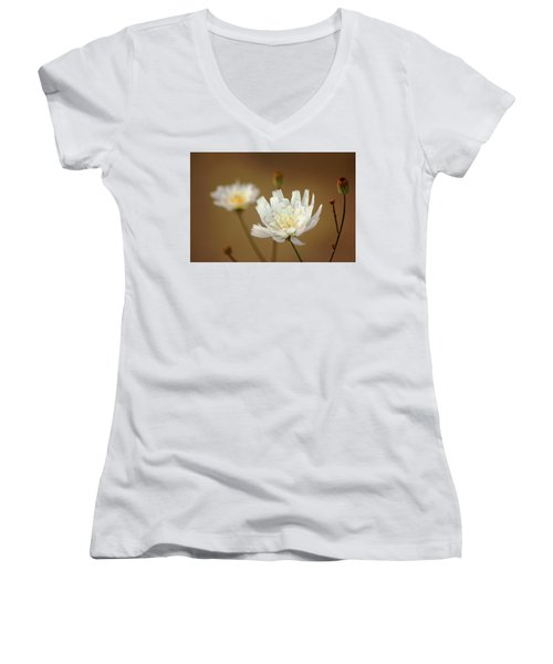 Women's V-Neck T-Shirt (Junior Cut) featuring the photograph Death Valley Superbloom 303 by Daniel Woodrum