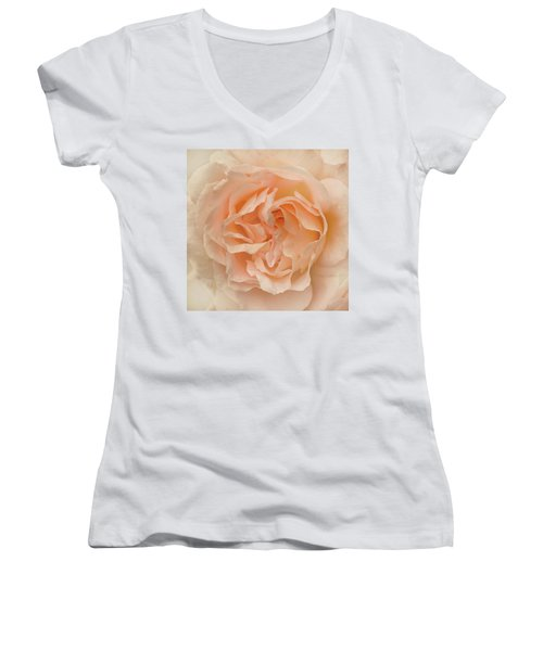 Women's V-Neck T-Shirt (Junior Cut) featuring the photograph Delicate Rose by Jacqi Elmslie
