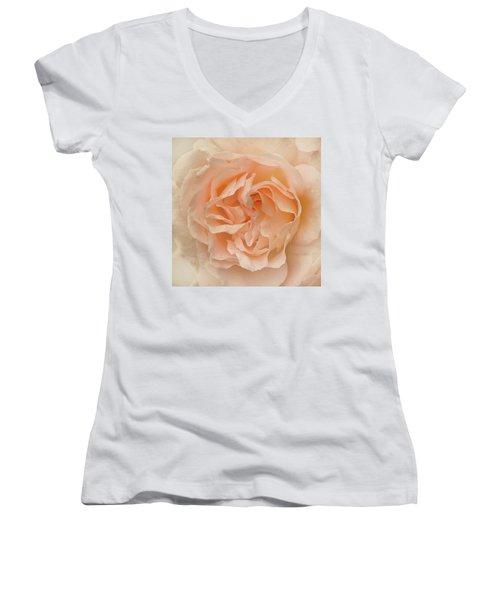 Delicate Rose Women's V-Neck T-Shirt (Junior Cut) by Jacqi Elmslie