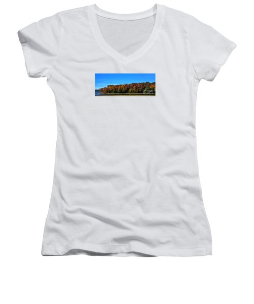 Delta Lake State Park Foliage Women's V-Neck T-Shirt (Junior Cut) by Diane E Berry