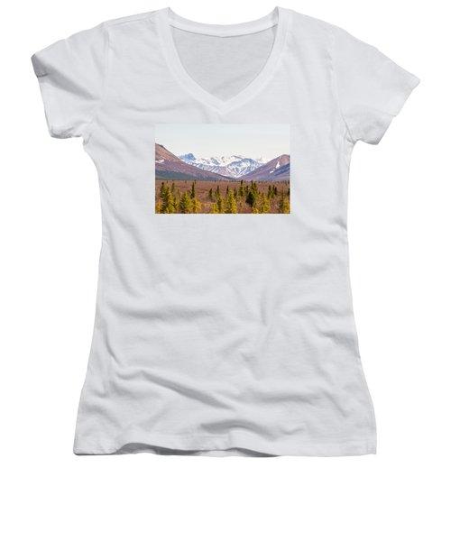 Denali Wilderness Beauty Women's V-Neck T-Shirt (Junior Cut) by Allan Levin