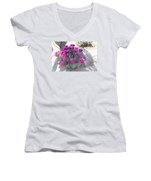 Desert Cactus Women's V-Neck T-Shirt