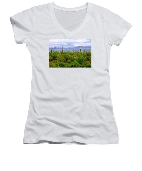 Desert Green Women's V-Neck T-Shirt