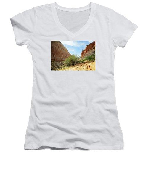 Desert Greenery Women's V-Neck