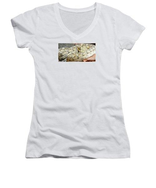 Desert Horned Viper Women's V-Neck T-Shirt (Junior Cut) by KD Johnson