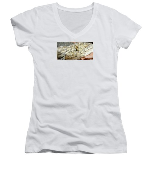 Desert Horned Viper Women's V-Neck T-Shirt
