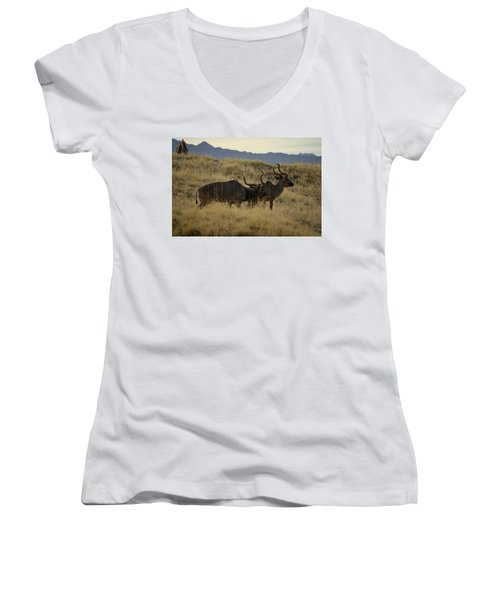 Desert Palm Landscape Women's V-Neck T-Shirt (Junior Cut) by Guy Hoffman