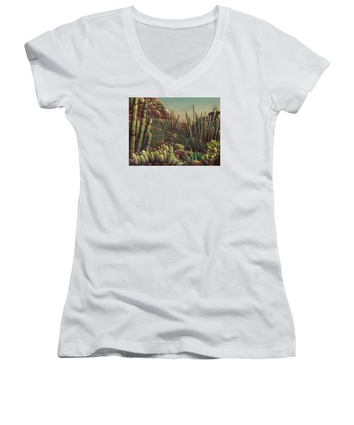 Desert Potpourri  Women's V-Neck T-Shirt (Junior Cut) by James Larkin