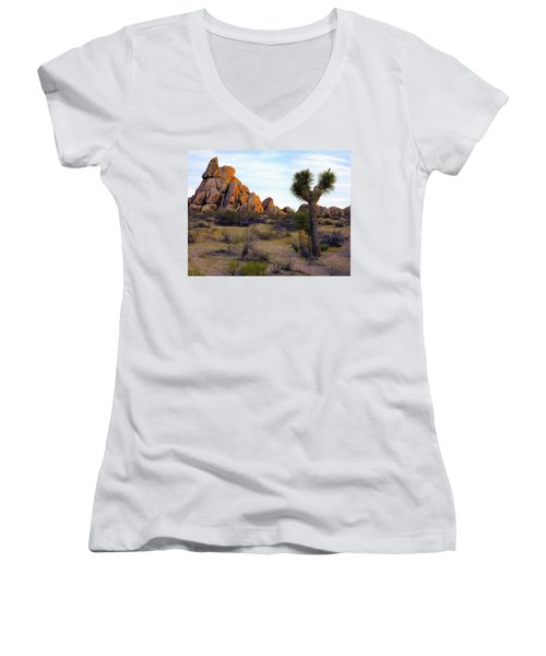 Desert Soft Light Women's V-Neck (Athletic Fit)