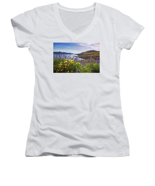 Diamond Valley Women's V-Neck T-Shirt