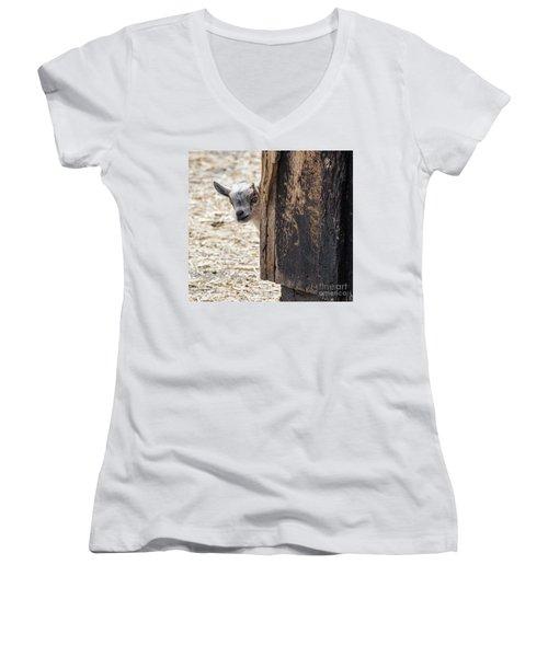 Do You Think Mom Saw Me Women's V-Neck T-Shirt