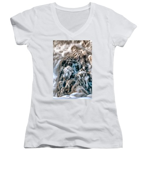 Dog Falls Women's V-Neck T-Shirt