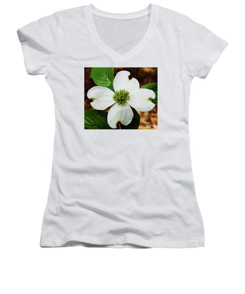 Dogwood Blossom Women's V-Neck