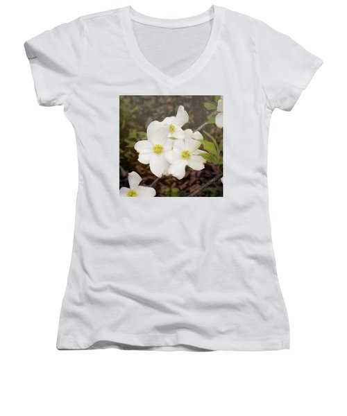 Dogwood Blossom Trio Women's V-Neck