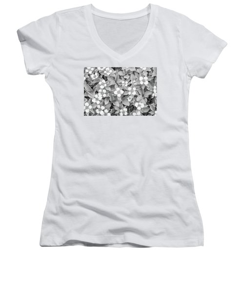 Dogwood In The Rain Women's V-Neck T-Shirt