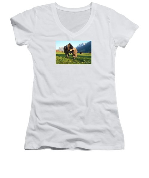Dolomites Mountain Cow Close-up Women's V-Neck T-Shirt (Junior Cut) by IPics Photography