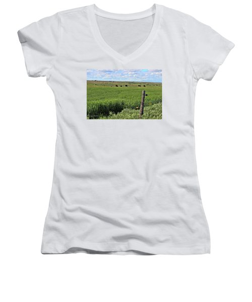 Don't Fence Me In Women's V-Neck T-Shirt