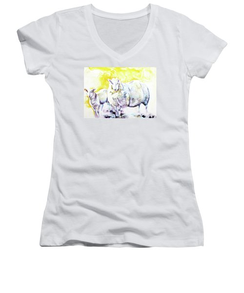 Don't Mess With My Lamb Women's V-Neck T-Shirt