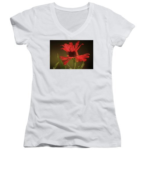 Double Petals Women's V-Neck T-Shirt (Junior Cut) by Donna G Smith