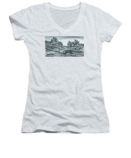 Down Stream Women's V-Neck T-Shirt (Junior Cut) by Kenneth Clarke