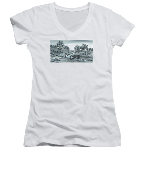 Down Stream Women's V-Neck T-Shirt