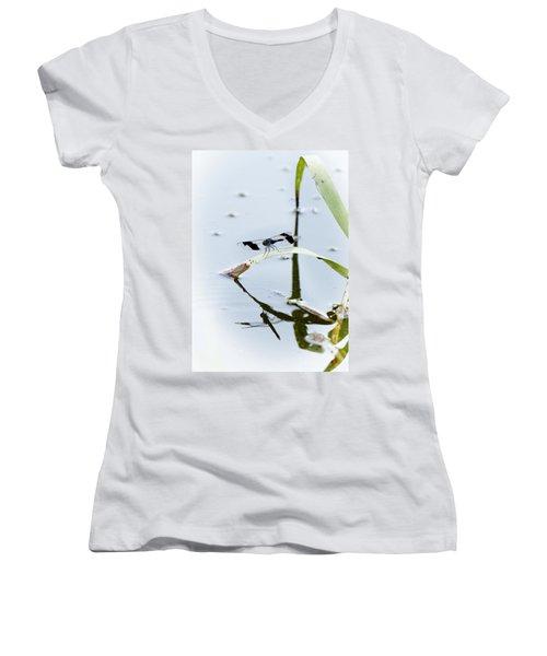 Dragon Fly Women's V-Neck T-Shirt