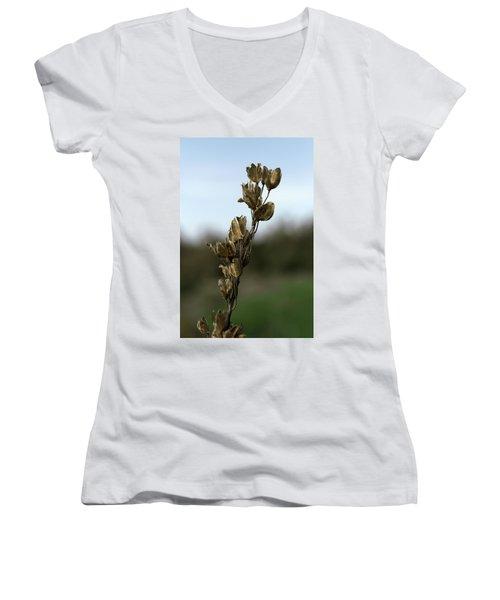 Drying Flower Women's V-Neck T-Shirt
