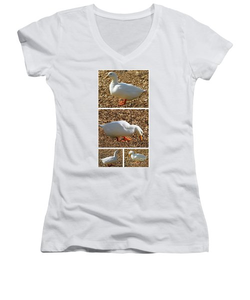 Duck Collage Mixed Media A51517 Women's V-Neck