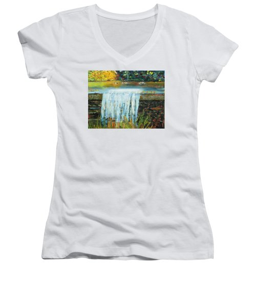 Ducks And Waterfall Women's V-Neck T-Shirt (Junior Cut) by Michael Daniels