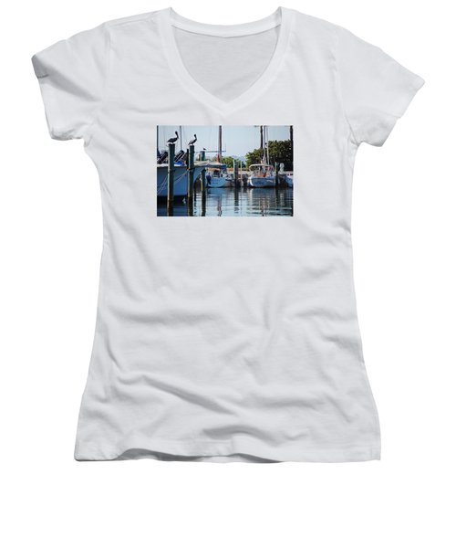 Duneden Fl. Women's V-Neck T-Shirt (Junior Cut) by Robert Meanor