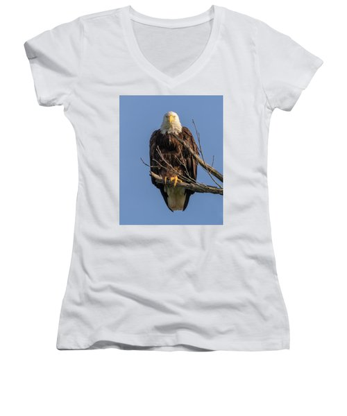 Eagle Stare Women's V-Neck