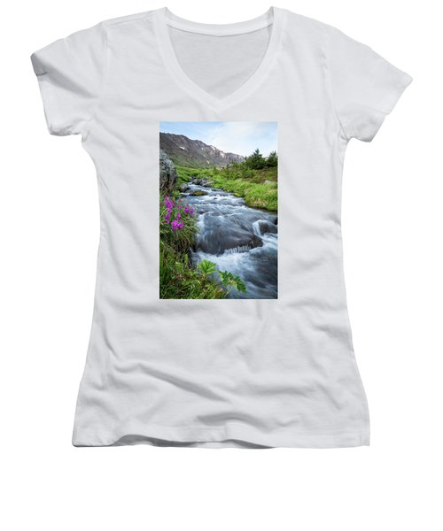 Early Days Of Summer Women's V-Neck T-Shirt