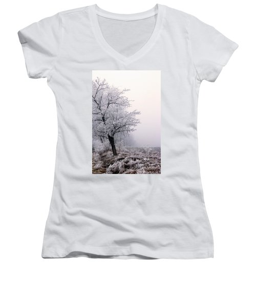 Early Morning Frost  Women's V-Neck