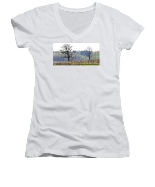 Early Spring Silhouettes  Women's V-Neck (Athletic Fit)