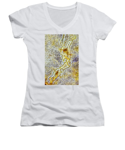 Earth Portrait 276 Women's V-Neck