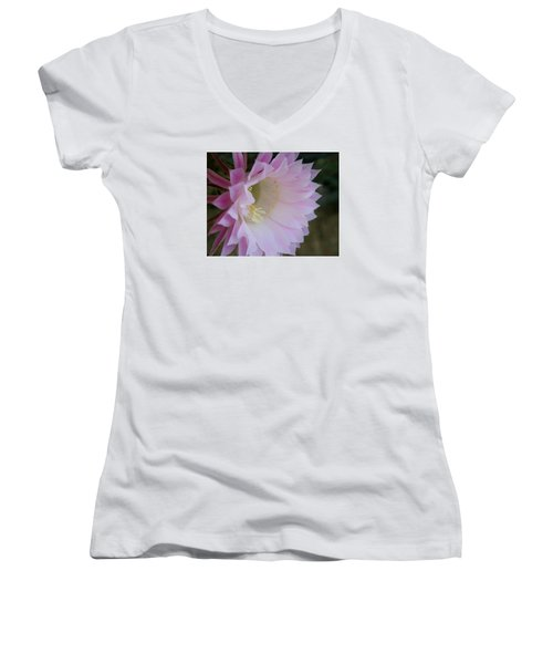 Women's V-Neck T-Shirt (Junior Cut) featuring the painting Easter Lily Cactus East 2 by Marna Edwards Flavell