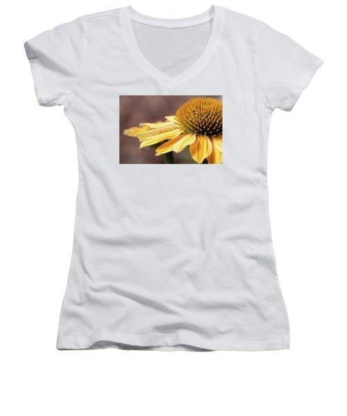 Echinacea, Cheyenne Spirit - Women's V-Neck (Athletic Fit)