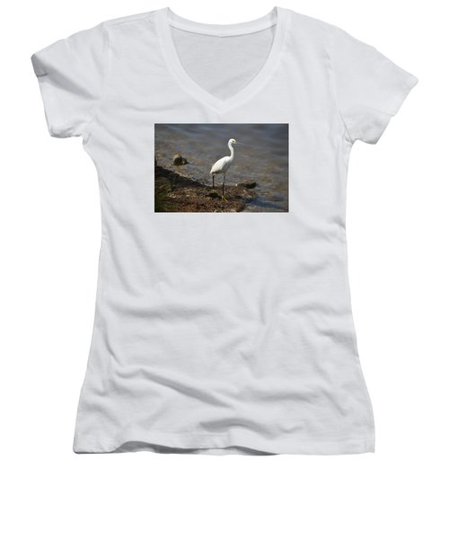 Egret 1 Women's V-Neck T-Shirt