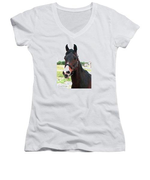 El Ameer Women's V-Neck T-Shirt (Junior Cut) by Joan Hartenstein
