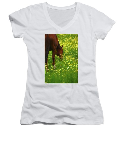 Women's V-Neck T-Shirt (Junior Cut) featuring the photograph Enjoying The Wildflowers by Karol Livote