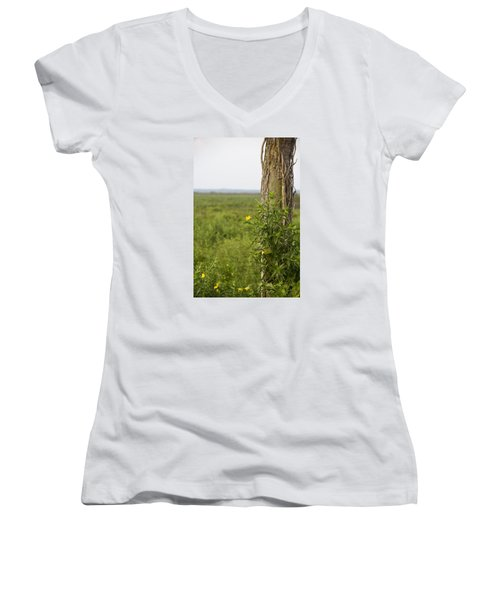 Entrance Women's V-Neck