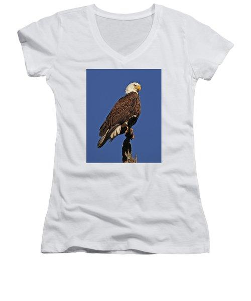 Ever Watchful Women's V-Neck T-Shirt