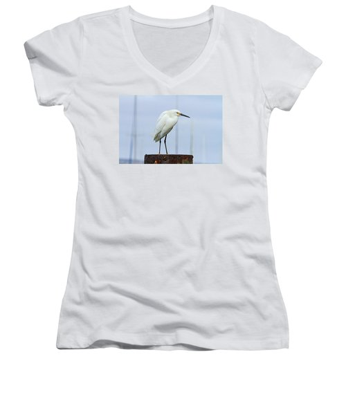 Ever Watchful Women's V-Neck T-Shirt